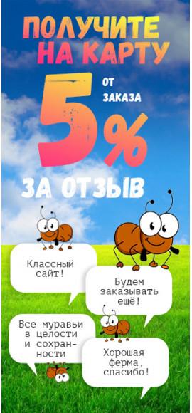 Кэшбэк 5%