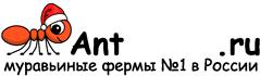 Муравьиные фермы AntFarms.ru - Уфа